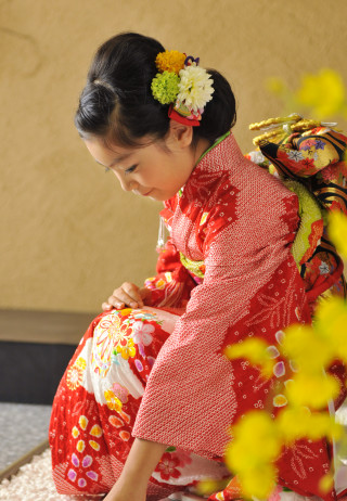 No.2286 絞り刺繍