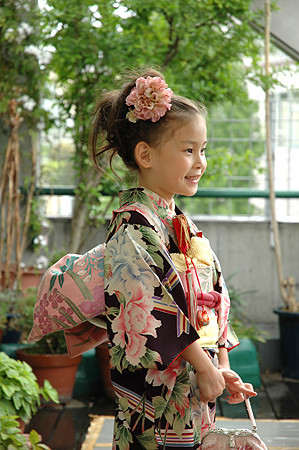 牡丹尽くし錦紗縮緬地祝着の衣装画像1