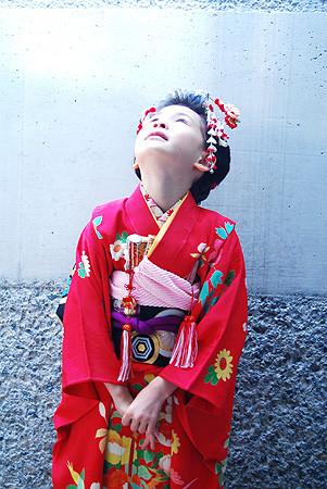 四季の花篭文様綸子地祝着の衣装画像1