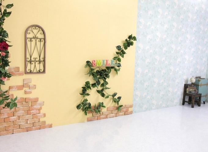 写真館ピノキオ 成増店の店舗画像1