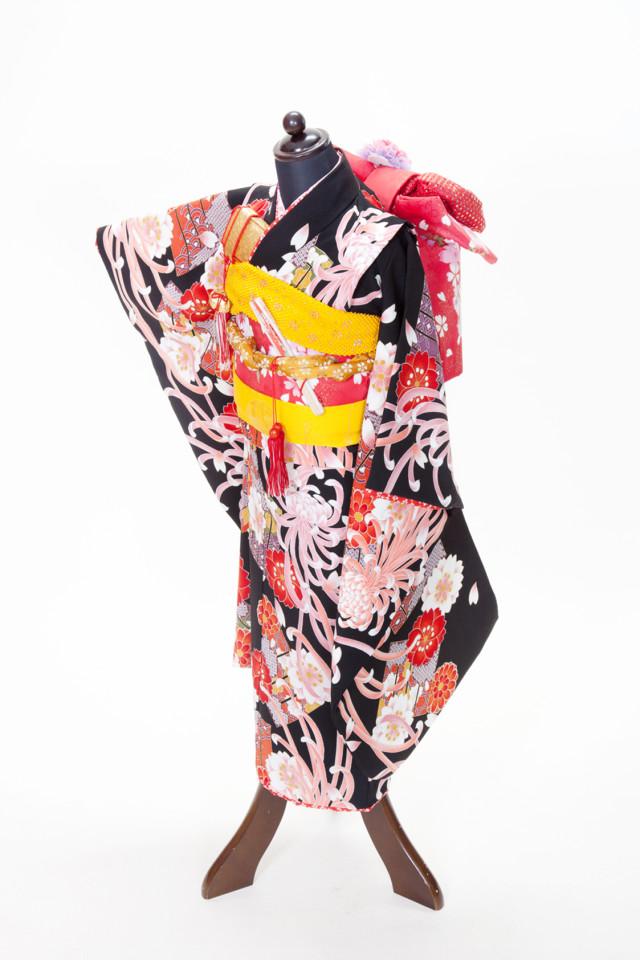 新古典柄のかっこいい着物の衣装画像1