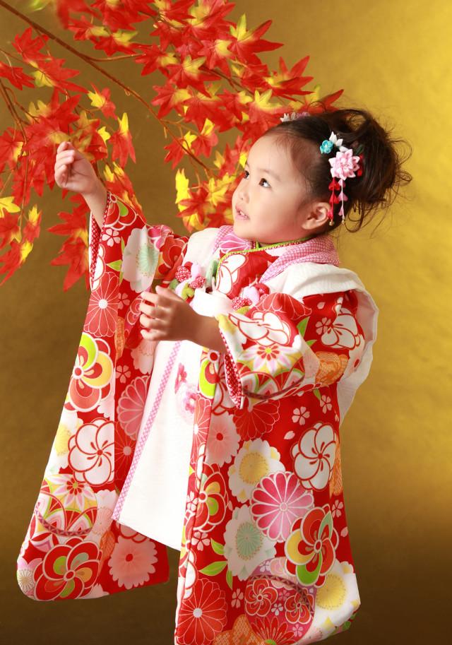 3歳女児 三つ身の衣装画像2