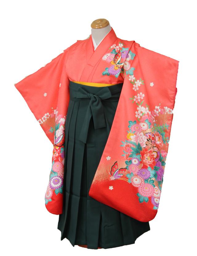袴姿の衣装画像2