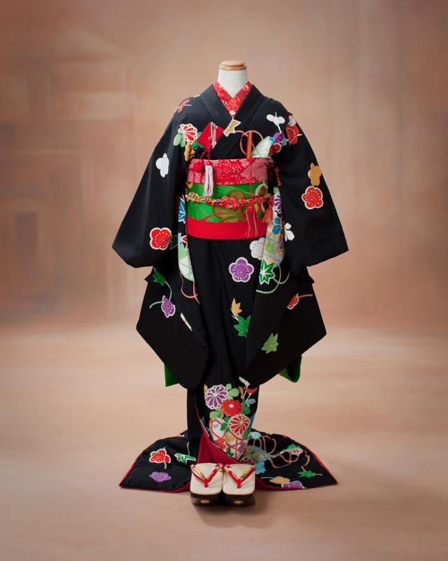 京都本格舞子 正絹の衣装画像1