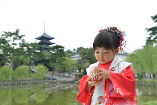 七五三 奈良公園&ならまちロケーション撮影