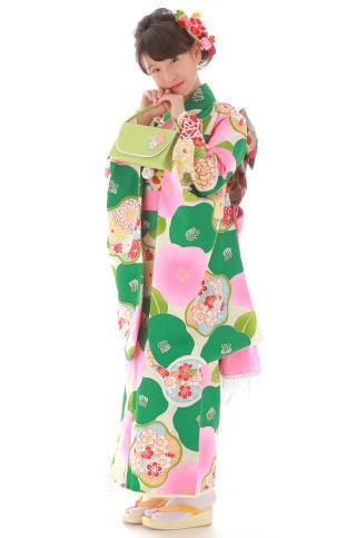 七五三・お祝い着物の衣装画像1