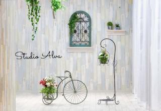 Studio Alva スタジオアルバの店舗画像1