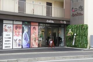 スタジオCocoa川崎登戸店(9月10日OPEN)のマタニティスタジオサムネイル画像